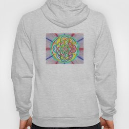 Clues in the Colors - The Rainbow Tribe Collection Hoody