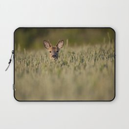 Roe Deer in Wheat Laptop Sleeve