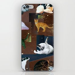 A Dozen Space Cats, Paper and Digital Collage by Cecilia Lee of Whipple Hill Art Collective iPhone Skin