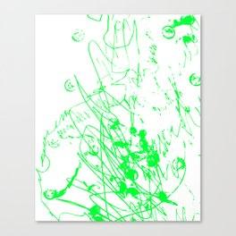 2a Canvas Print