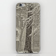 Snow Composition iPhone & iPod Skin