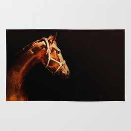 Horse Wall Art, Horse Portrait Over a Black background, Horse Photography, Closeup Horse Head Rug