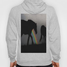 Silhouette of Color Hoody