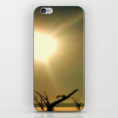 The Sebomai of Nature iPhone & iPod Skin