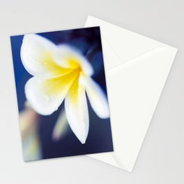 Wild Blue Morning Stationery Cards