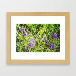 Wild Delphinium Bliss Framed Art Print