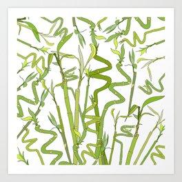 Bamboos Art Print