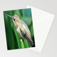 Chirp, Chirp Stationery Cards
