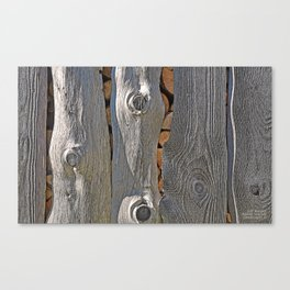SLAB-SIDE WOODSHED SHADOWS Canvas Print