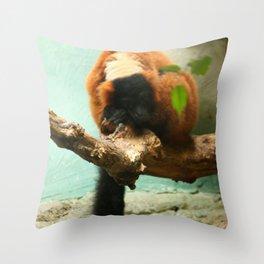 Sleeping Monkey Photography Print Throw Pillow