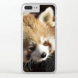 Ailurus Fulgens Clear iPhone Case