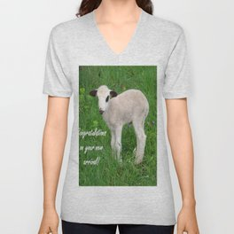 Congratulations On Your New Arrival Unisex V-Neck