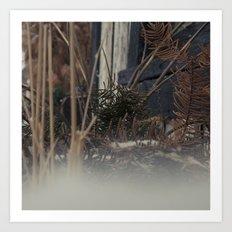 untitled photo1 Art Print