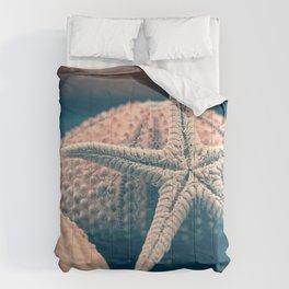 seashells 4 Comforters