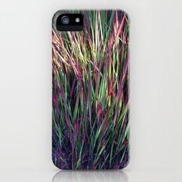 Indio Palm iPhone Case