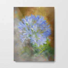 Agapanthus in Blue Metal Print