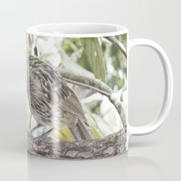 Looking for bugs Coffee Mug