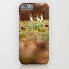 Hello Spring II Slim Case iPhone 6s