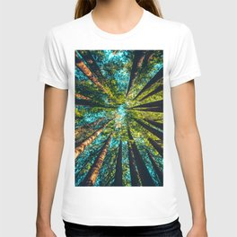 Looking Up At Trees In A Dense Forest T-shirt
