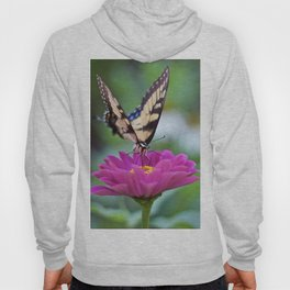 Tiger Swallowtail Hoody
