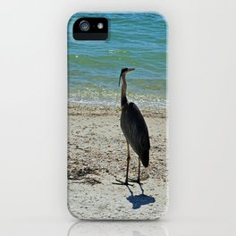 What It's All About iPhone Case