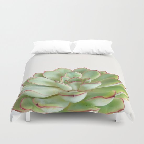 Green Succulent by cassiabeck