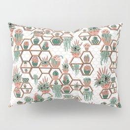Succulent Garden. Echeveria, Cacti, plants, aloe vera, pachyveria, haworthia, holiday gift Pillow Sham