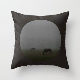 Not a Horse, but a Ghost Throw Pillow