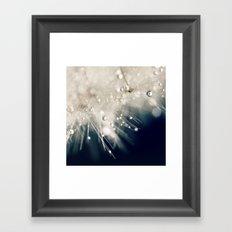 dandelion evening blue Framed Art Print