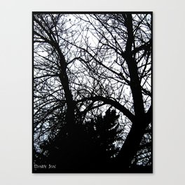 Treeshadow Canvas Print