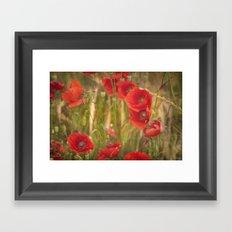 Poppies...... Framed Art Print