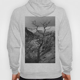 Withered Tree on top of Mountain Range, Big Bend - Landscape Photography Hoody