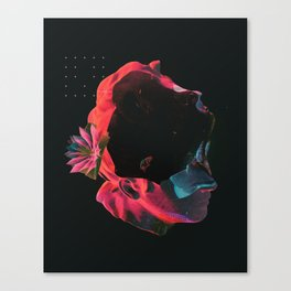 Vague Synesthesia. Canvas Print