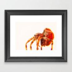 Bugged #29 Framed Art Print