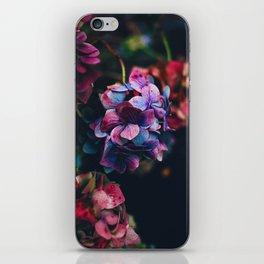 Treasure of Nature I iPhone Skin