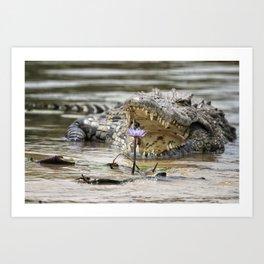 Crocodile and Water Lily, No. 2 Art Print