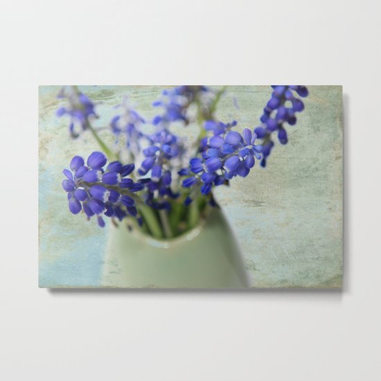 Grape Hyacinths Metal Print