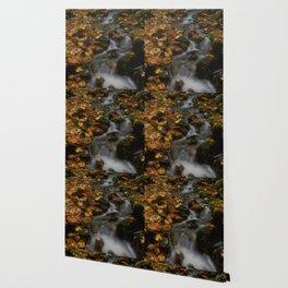 Forest Creek Amongst The Leaves Wallpaper