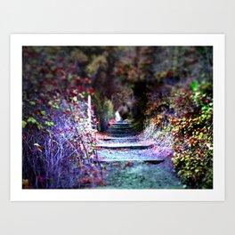 Secret Garden Path Purple Dream Photography Art Print