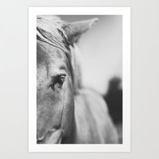 The Spirited Horse Art Print