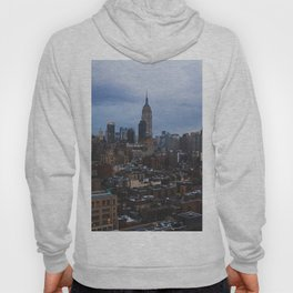Empire State Building and the Manhattan skyline Hoody