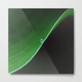 one drop on green Metal Print