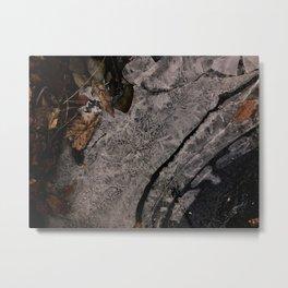Frozen Stream Bed 1 Metal Print