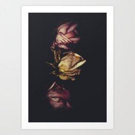 Dreams in Organza Art Print