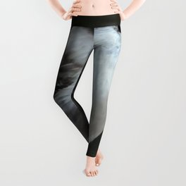 Gray Jay Leggings