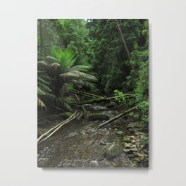 Forest Stream Metal Print