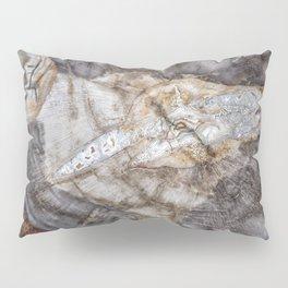 Petrified wood 3266 Pillow Sham
