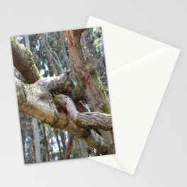 Intertwining Stationery Cards