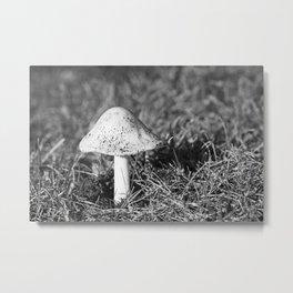 Shaggy Ink Cap Mushroom Metal Print