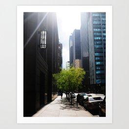 Dallas Lonely Man Art Print